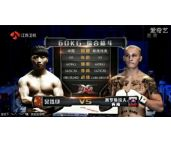 19岁小将KO之王,小霸王暴揍欧洲拳王