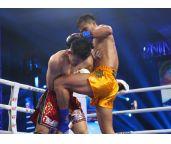 中国拳手对手太强?新星惨遭播求爱徒击昏引发的思考